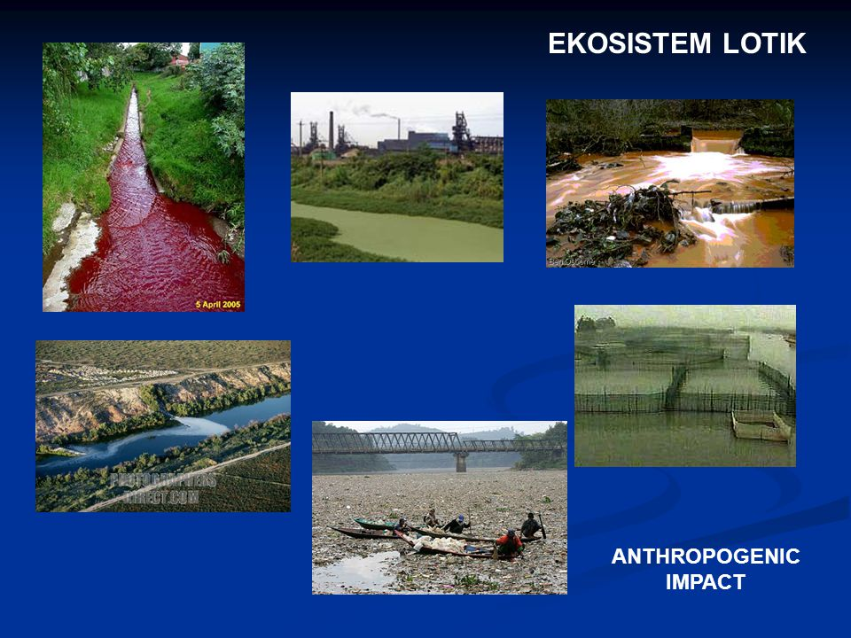 EKOSISTEM LOTIK ANTHROPOGENIC IMPACT