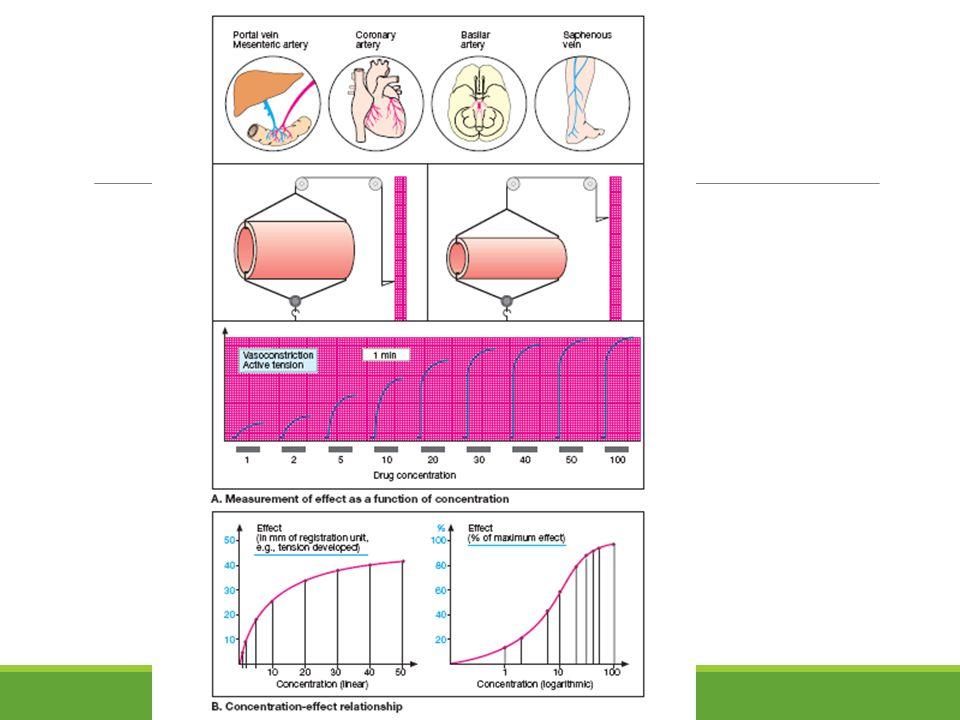 Evaluasi berupa skor terhadap kemerahan dan edema yg terjadi 0 = tidak ada kemerahan 1 = merah muda 2 = eritema 3 = merah sekali 4 = merah menyala dengan perluasan daerah 0 = tidak ada edem 1 = edema sangat ringan 2 = edema ringan 3 = edema sedang (1 mm) 4 = edema berat (>1 mm)