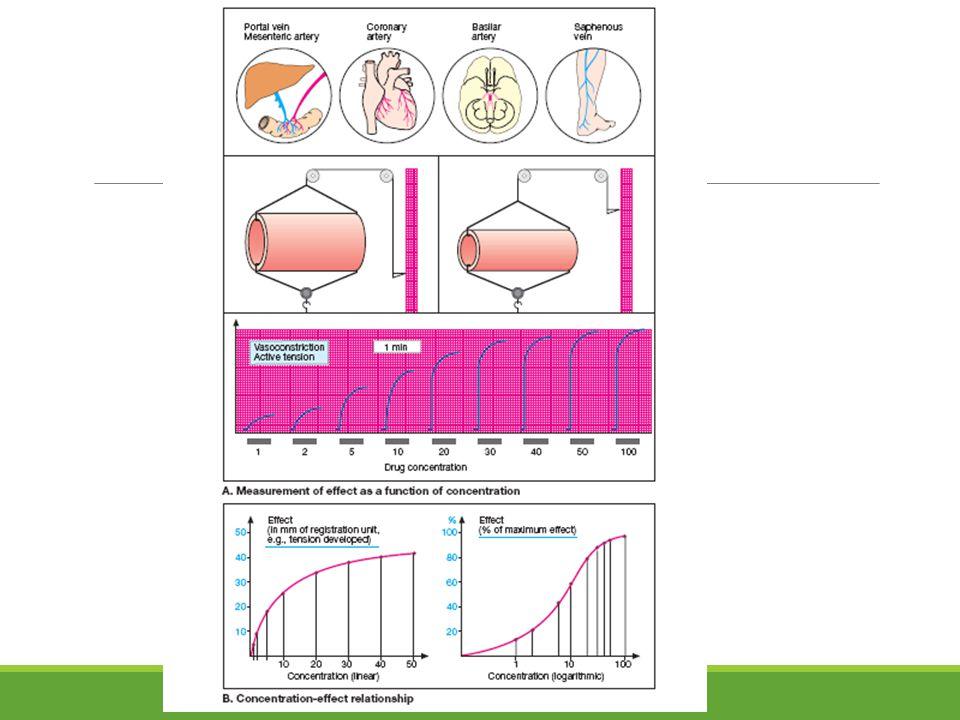 Pengamatan Pengamatan : Jumlah implantasi (ada nodul yg kaya vaskularisasi) Jika ada selisih antara implantasi total dengan jumlah korpora lutea  terjadi preimplantation loss (resorpsi awal) Jumlah resorpsi : selisih jumlah persarangan dengan jumlah janin yg tetap hidup sampai cukup umur