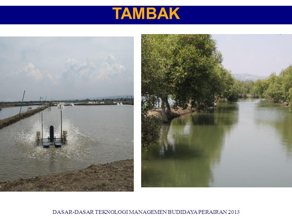 TAMBAK DASAR-DASAR TEKNOLOGI MANAGEMEN BUDIDAYA PERAIRAN 2013