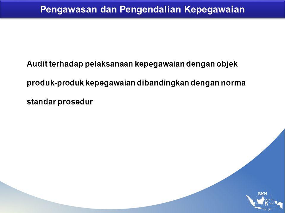 BKN Pengawasan dan Pengendalian Kepegawaian Audit terhadap pelaksanaan kepegawaian dengan objek produk-produk kepegawaian dibandingkan dengan norma st