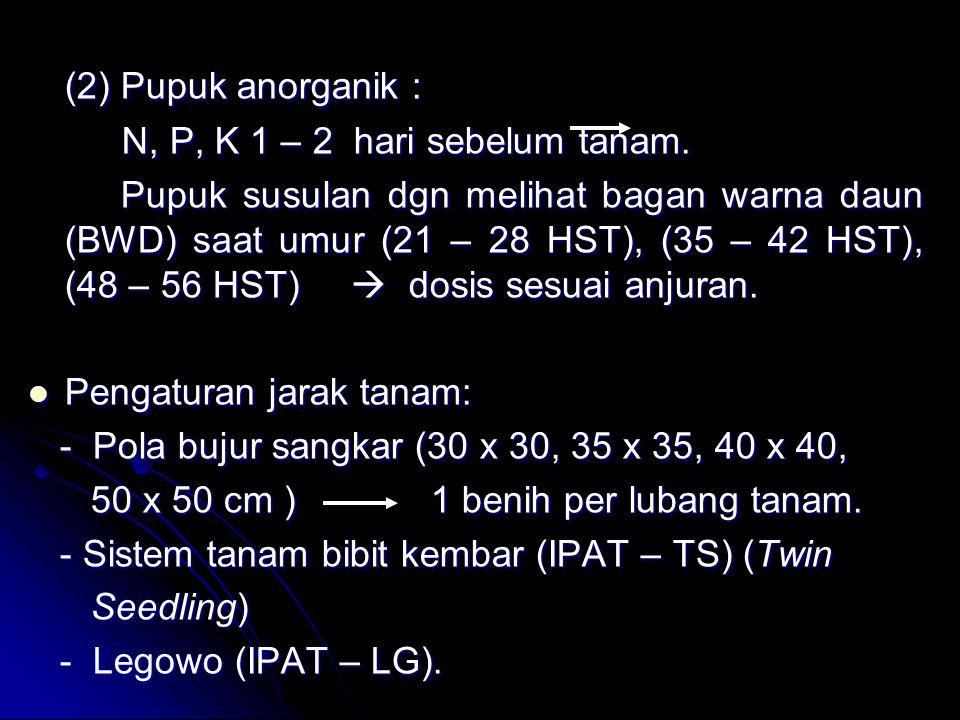 (2) Pupuk anorganik : N, P, K 1 – 2 hari sebelum tanam. N, P, K 1 – 2 hari sebelum tanam. Pupuk susulan dgn melihat bagan warna daun (BWD) saat umur (