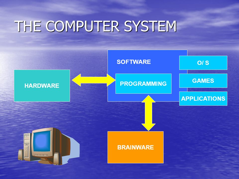 THE COMPUTER SYSTEM HARDWARE SOFTWARE BRAINWARE PROGRAMMING O/ S GAMES APPLICATIONS