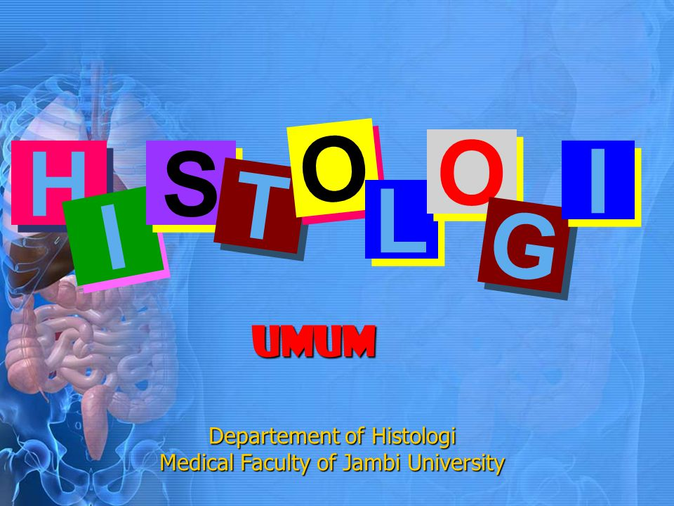 H H I I S S T T O O L L O O G G I I UMUM Departement of Histologi Medical Faculty of Jambi University