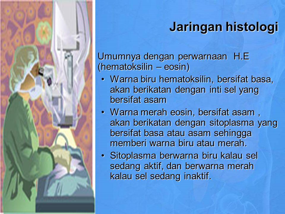 Departement of Histologi Medical Faculty of Jambi University Tim Pengajar Kepala Bagian : dr.