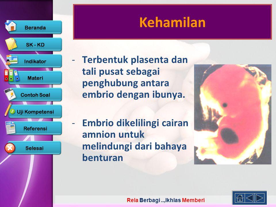 Rela Berbagi..,Ikhlas Memberi -Terbentuk plasenta dan tali pusat sebagai penghubung antara embrio dengan ibunya. -Embrio dikelilingi cairan amnion unt
