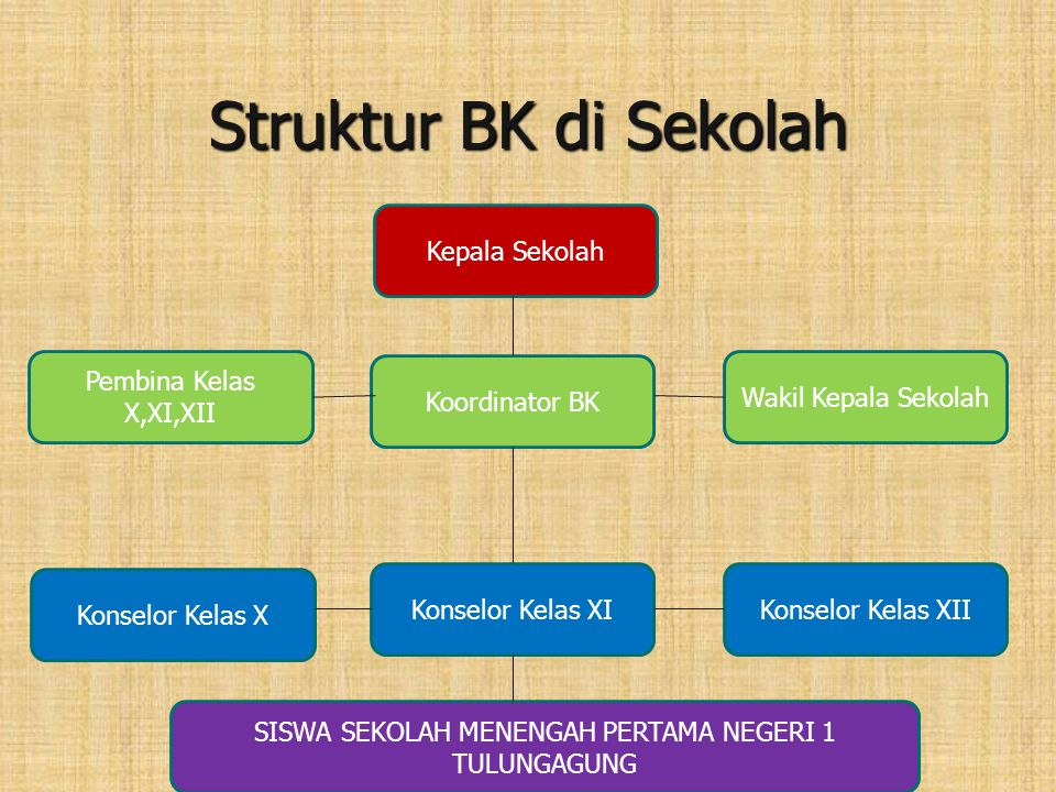 Struktur BK di Sekolah Kepala Sekolah Pembina Kelas X,XI,XII Koordinator BK Wakil Kepala Sekolah Konselor Kelas X Konselor Kelas XIKonselor Kelas XII