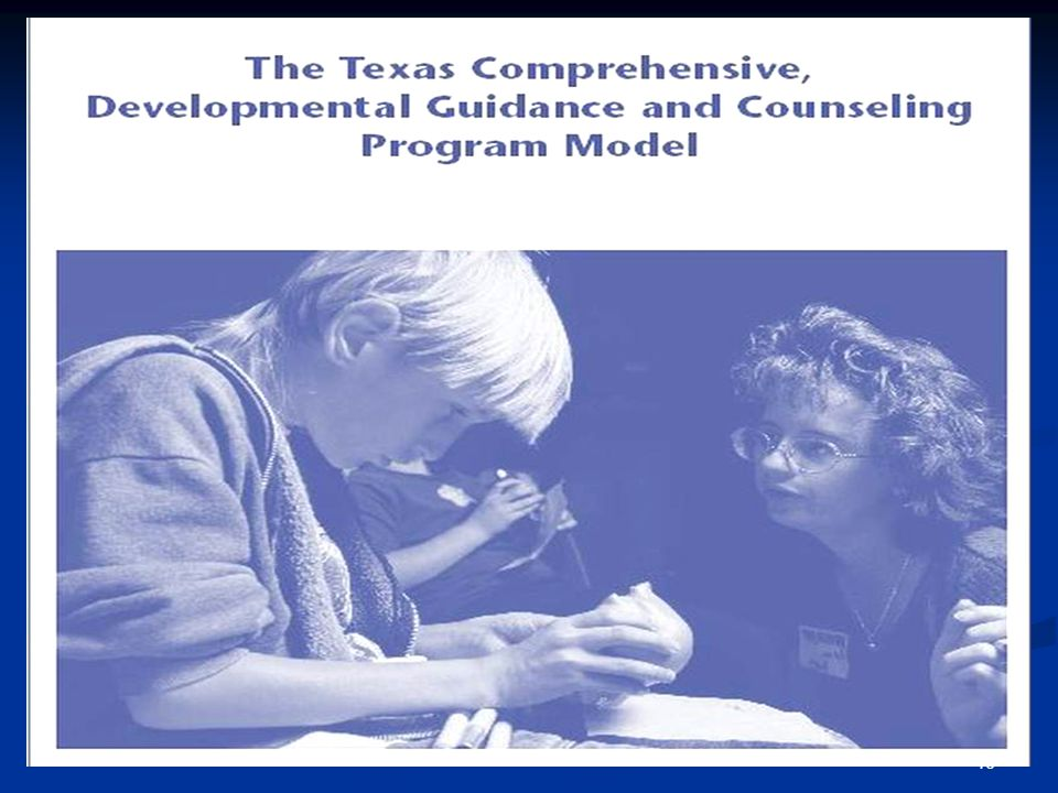 45 SCHOOL GUIDANCE AND COUNSELING A Guide for Program Development Comprehensive, Developmental Guidance and Counseling Program for Texas Public School