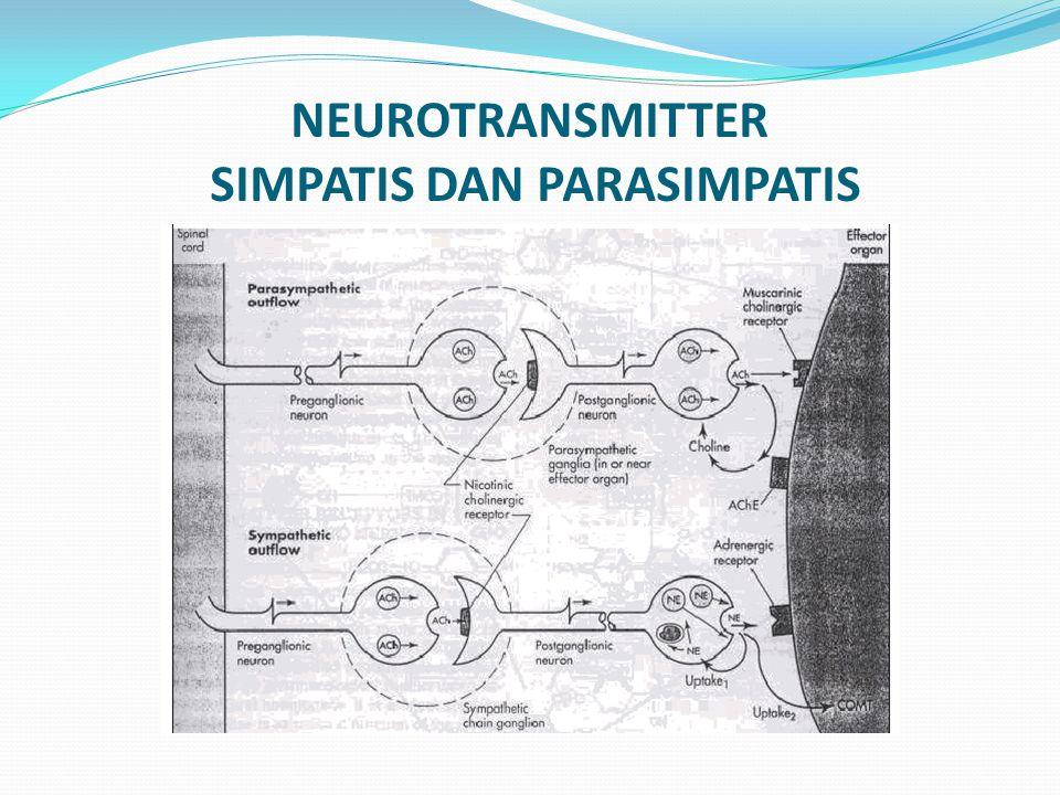 NEUROTRANSMITTER SIMPATIS DAN PARASIMPATIS