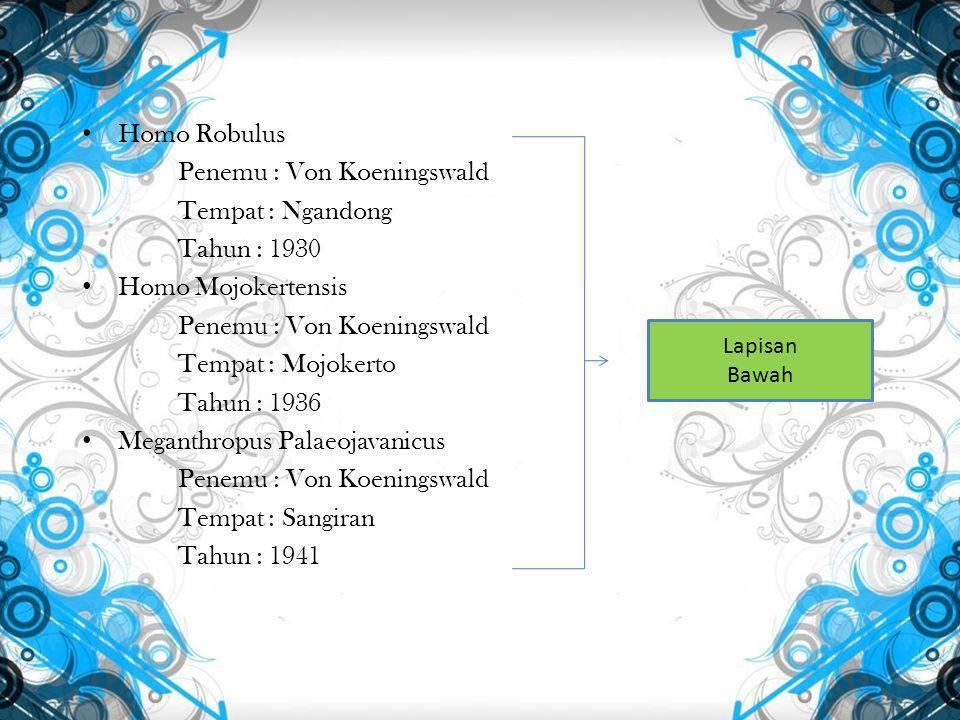 Homo Robulus Penemu : Von Koeningswald Tempat : Ngandong Tahun : 1930 Homo Mojokertensis Penemu : Von Koeningswald Tempat : Mojokerto Tahun : 1936 Meganthropus Palaeojavanicus Penemu : Von Koeningswald Tempat : Sangiran Tahun : 1941 Lapisan Bawah
