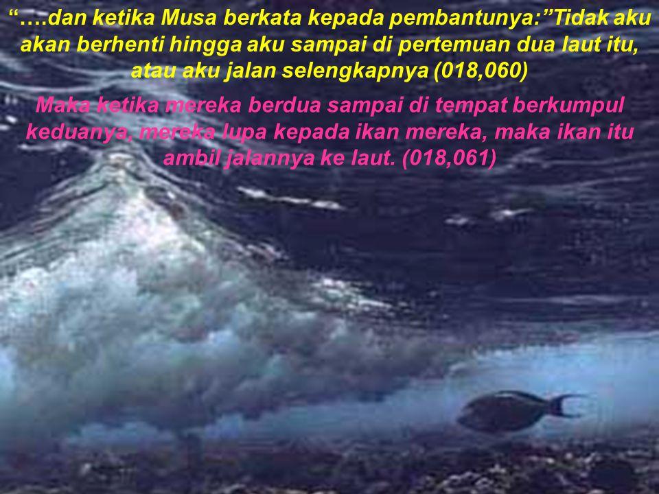Maka ketika mereka berdua sudah meliwatinya, berkatalah ia kepada pembantunya: Bawalah makanan kita, sesungguhnya kita telah bertemu kelelahan dari perjalanan kita ini .(018,062) Ia berkata: Tidakkah engkau lihat ketika kita berlindung di karang itu, yaitu aku telah lupa kepada ikan kita, dan tidak ada yang melupakan aku melainkan setan, lalu ia ambil jalannya ke laut dengan ajaib .(018,063) Ia berkata: Itu tanda-tanda yang kita inginkan maka keduanya kembali (berbalik) atas jalan ketika datangnnya.(018,064) Lalu mereka berdua dapati seorang hamba dari hamba-hamba kami yang kami telah beri dia pengaturan dari sisi kami dan kami beri tahu kepadanya dari sisi kami ilmu.(018,065)