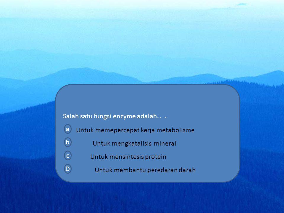menu SK materi simulasi video soal home profil a a a Salah satu fungsi enzyme adalah...