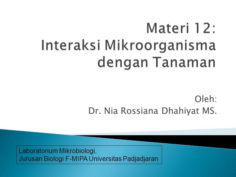  -Rizosfer - mikoriza  -Filosfer -resistensi peny.tan  -lichenes (fitoaleksin)  -insekt.