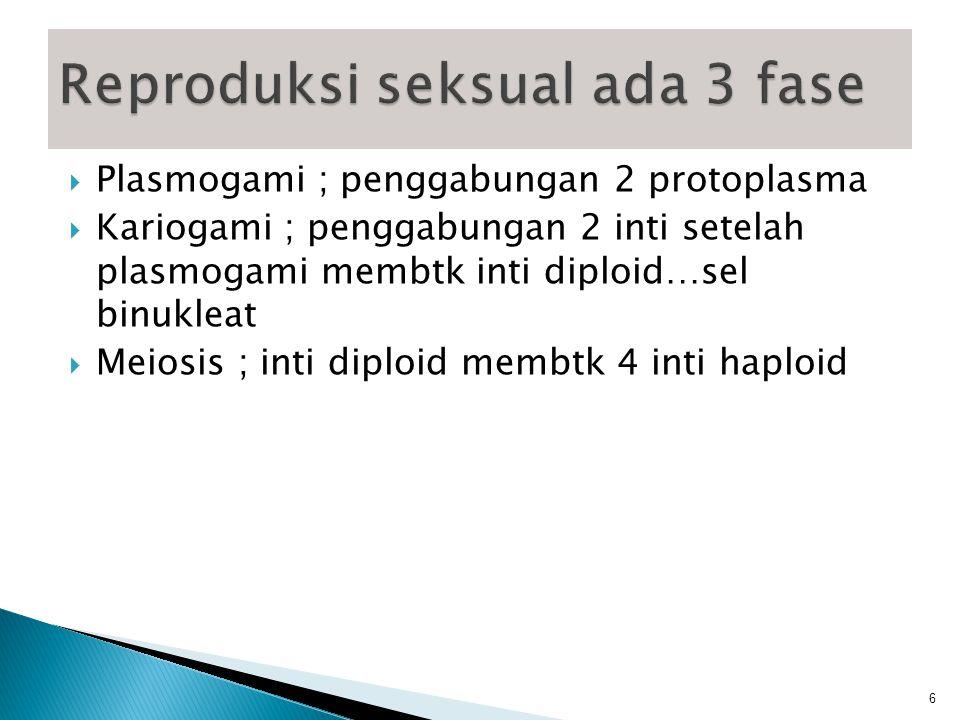  Kopulasi planogamet ; Hub ant gamet yg bergerak  Kontak gametangium ; satu inti atau lebih dari antheridium ke oogonium  Kopulasi gametangium : bersatunya seluruh isi sel gametangium  Spermatisasi ; struktur kecil pd jamur, berspora bersifat jantan bersatu dgn sel betina  Somatogami,sel somatik berfungsi bg alat kelamin (Basidiomycetes)  Kompatibilitas : Jamur homotalik (Thalus membuahi sendiri) dan berkembang biak jamur heterothalik :Thalus yang sesuai berkembang secara kawin 7