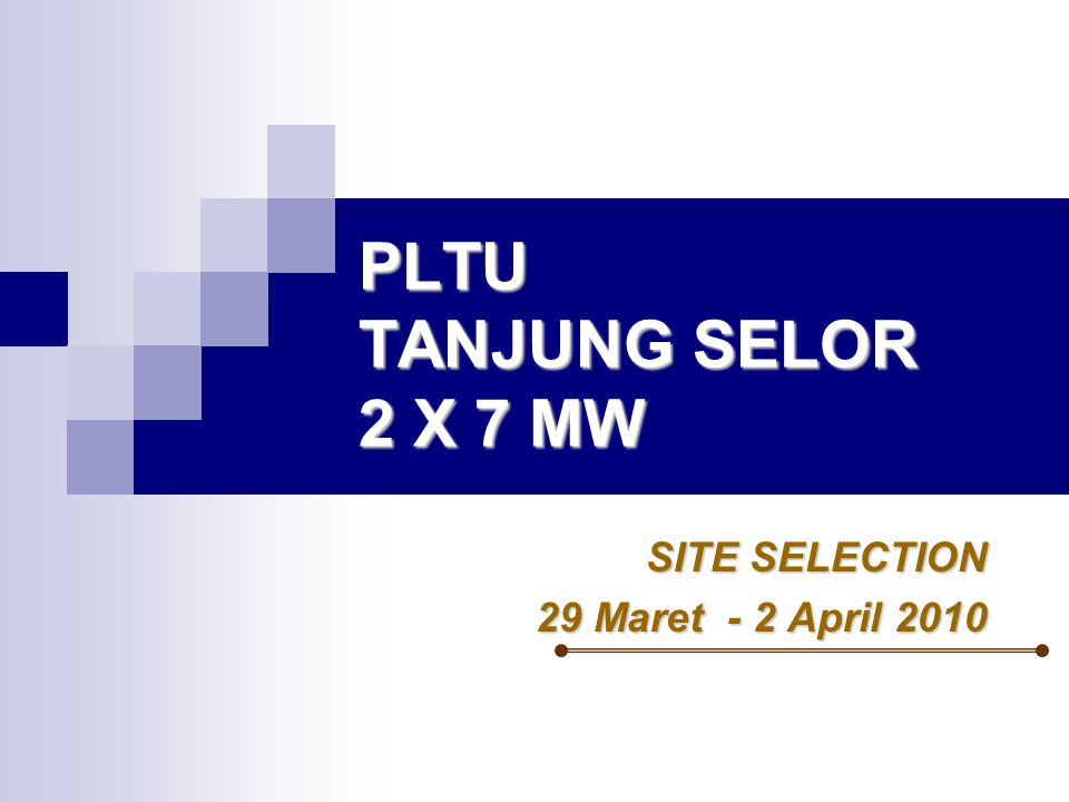 PLTU TANJUNG SELOR 2 X 7 MW SITE SELECTION 29 Maret - 2 April 2010