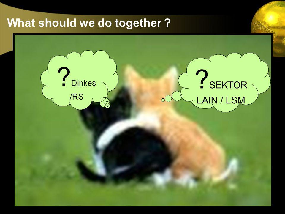 What should we do together ? ? SEKTOR LAIN / LSM ? Dinkes /RS