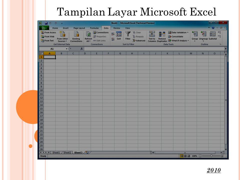 Tampilan Layar Microsoft Excel 2010
