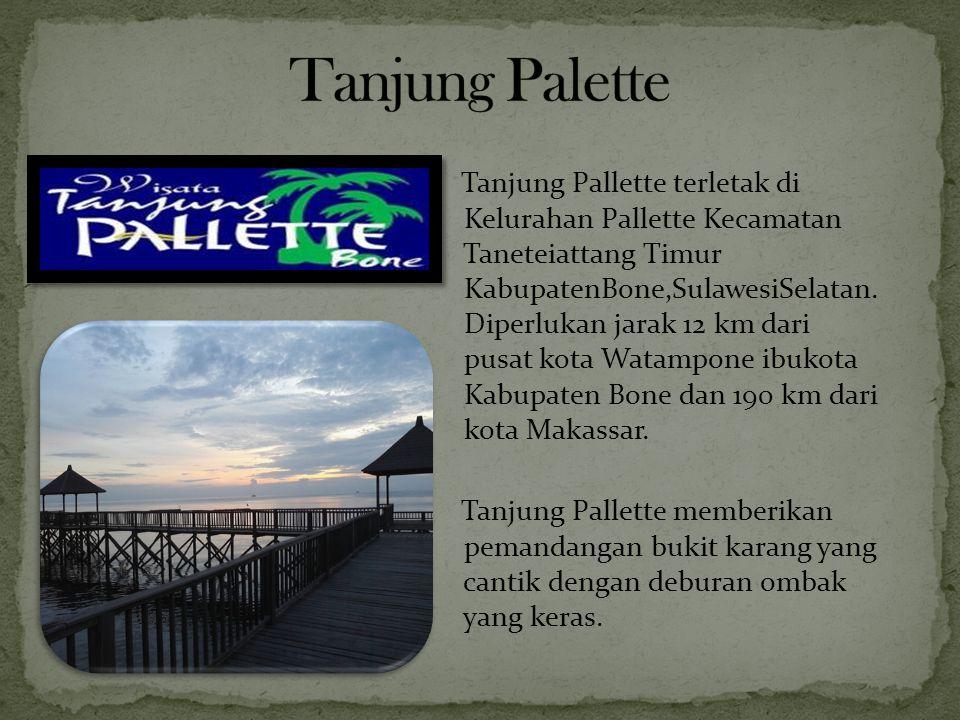 Tanjung Pallette terletak di Kelurahan Pallette Kecamatan Taneteiattang Timur KabupatenBone,SulawesiSelatan. Diperlukan jarak 12 km dari pusat kota Wa