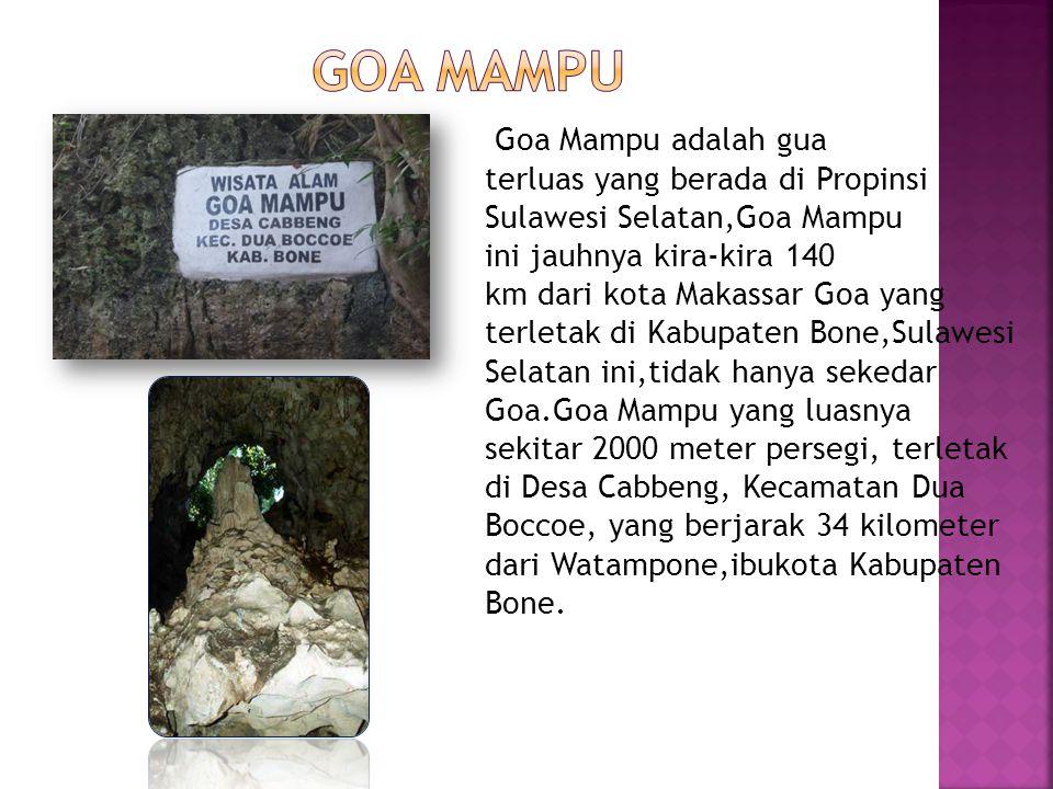Goa Mampu adalah gua terluas yang berada di Propinsi Sulawesi Selatan,Goa Mampu ini jauhnya kira-kira 140 km dari kota Makassar Goa yang terletak di K