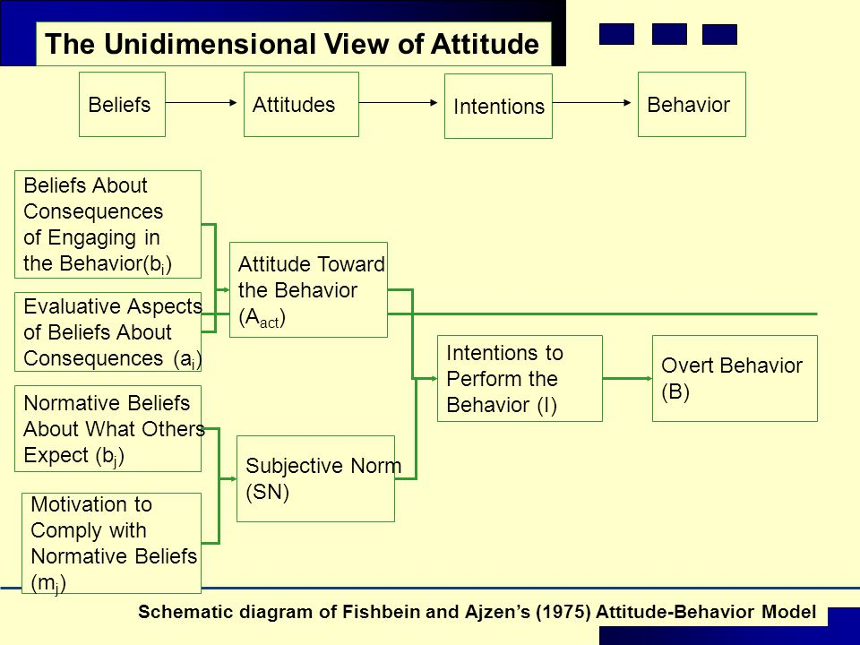The Unidimensional View of Attitude Beliefs About Consequences of Engaging in the Behavior(b i ) Evaluative Aspects of Beliefs About Consequences (a i