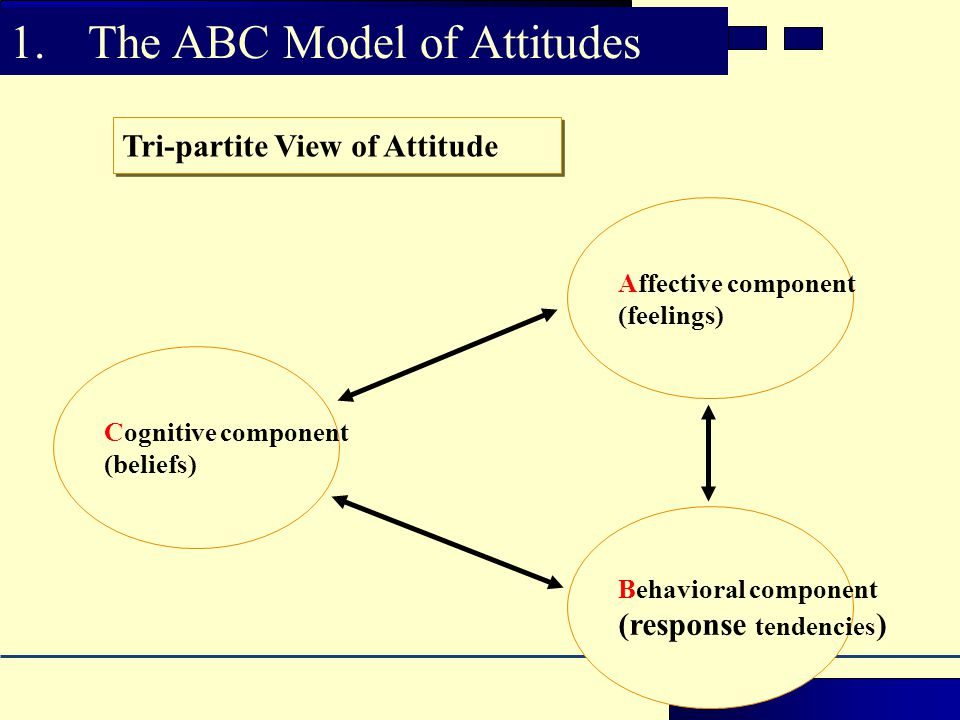 Cognitive component (beliefs) Affective component (feelings) Behavioral component (response tendencies ) Overall attitude Tri-partite View of Attitude