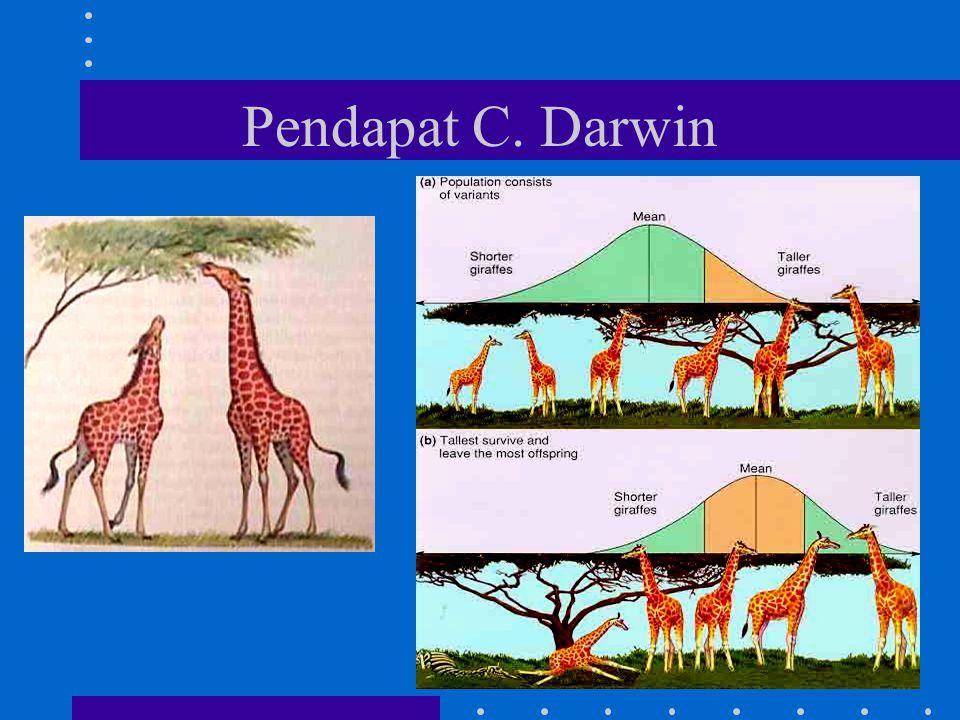 Tokoh yang berpendapat tentang seleksi alam : Charles Darwin dan JB. de Lamarck Pendapat C. Darwin 1. Bahwa spesies yang hidup sekarang berasal dari s