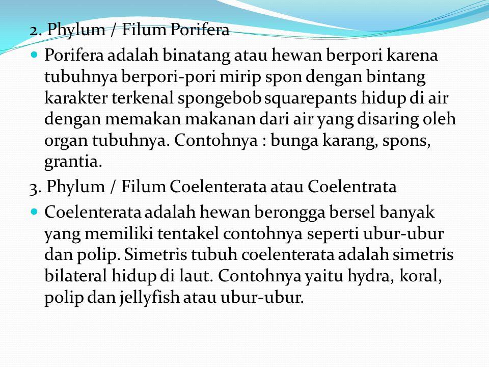 Klasifikasi Kingdom Animalia 1. Phylum / Filum Protozoa atau Protosoa Protozoa adalah hewan bersel satu karena hanya memiliki satu sel saja alias bers