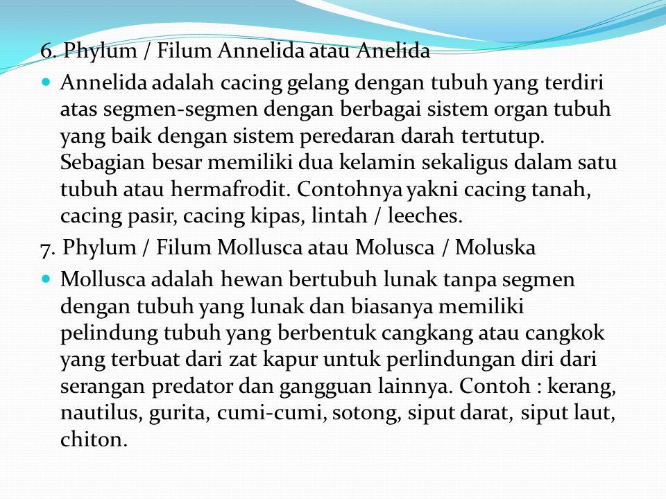 4. Phylum / Filum Platyhelminthes Platyhelminthes adalah binatang sejenis cacing pipih dengan simetri tubuh simetris bilateral tanpa peredaran darah d
