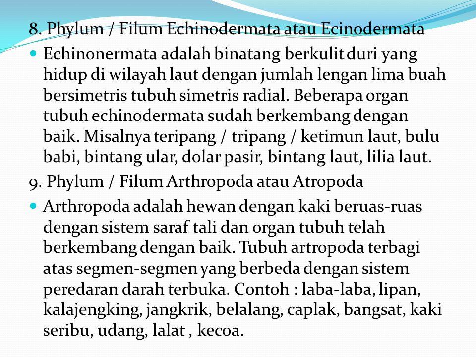 6. Phylum / Filum Annelida atau Anelida Annelida adalah cacing gelang dengan tubuh yang terdiri atas segmen-segmen dengan berbagai sistem organ tubuh