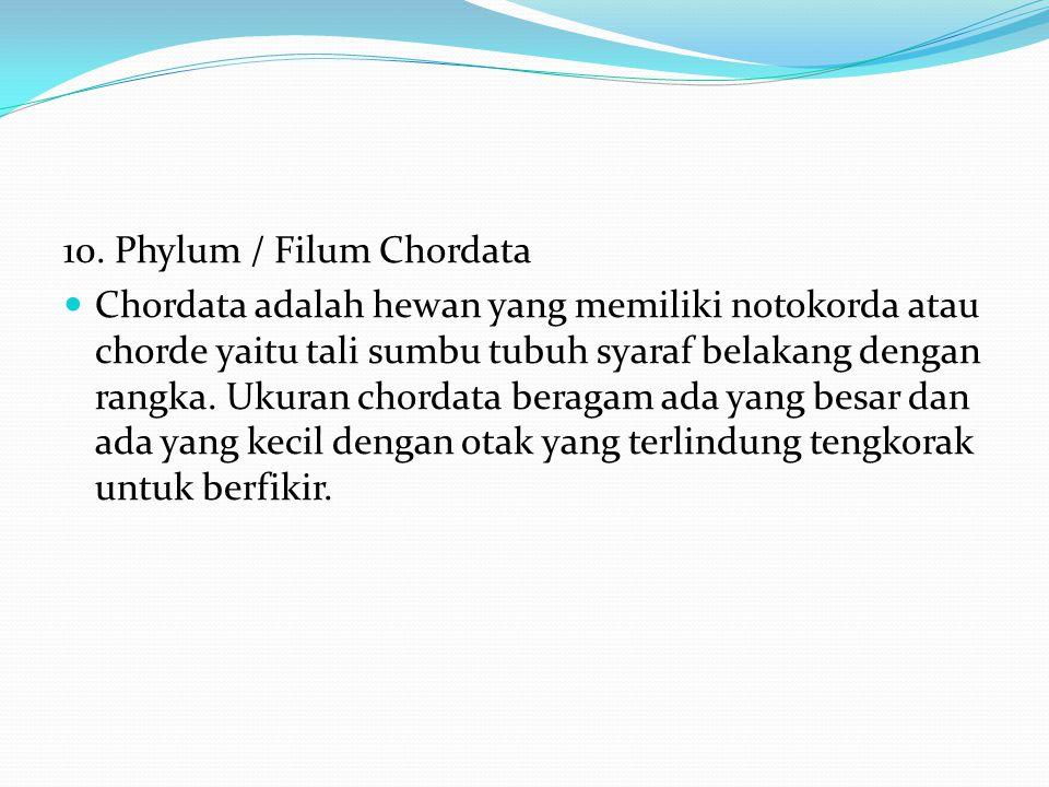 8. Phylum / Filum Echinodermata atau Ecinodermata Echinonermata adalah binatang berkulit duri yang hidup di wilayah laut dengan jumlah lengan lima bua
