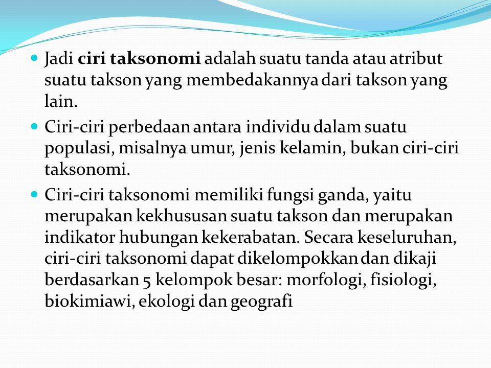 CIRI-CIRI LUMUT Berklorofil, belum memiliki (floem, xilem) Tumbuh di tempat yang lembab Belum dapat dibedakan antara akar, batang, dan daun Peralihan antara tumbuhan Thallophyta dan Cormophyta Autotrof Reproduksi sexual dan asexual Sebagian lumut tubuhnya berupa talus (lembaran) Sebagian lagi telah memiliki organ mirip akar (rizoid), batang, dan daun.