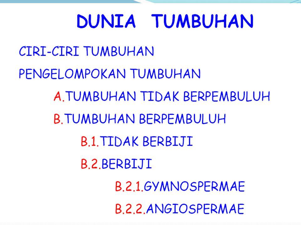 KLASIFIKASI TUMBUHAN 1. Tumbuhan non Tracheophyta (tak berpembuluh) Lumut ( bryophyta ) 2. Tumbuhan tracheophyta ( berpembuluh) 1. Paku-pakuan (Pterid