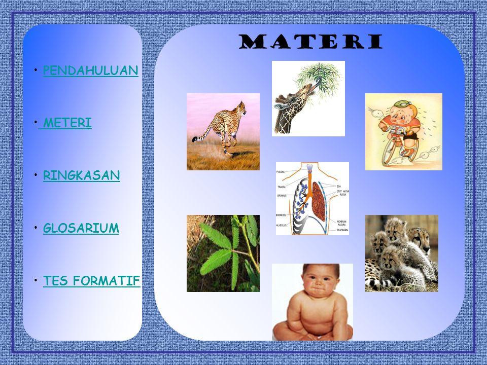 Standar Kompetensi Mengaplikasikan konsep keanekaragaman makhluk hidup berdasarkan ciri-ciri kehidupan Kompetensi Dasar Mendeskripsikan ciri-ciri makh
