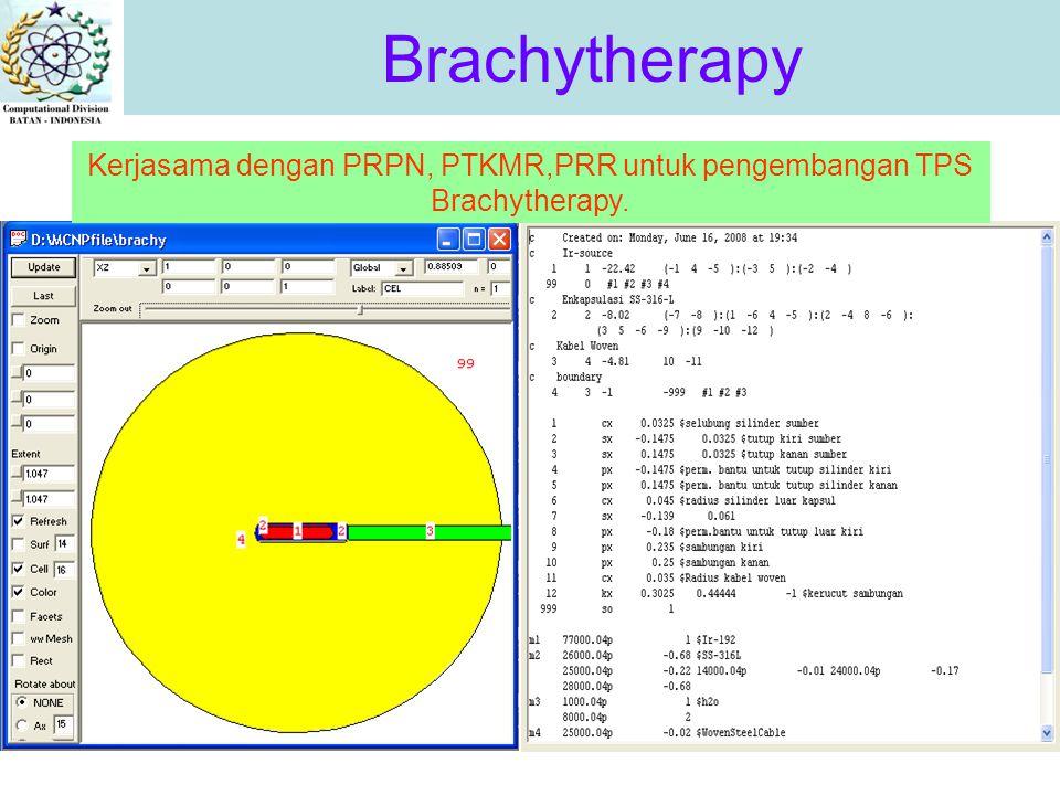 Brachytherapy Kerjasama dengan PRPN, PTKMR,PRR untuk pengembangan TPS Brachytherapy.