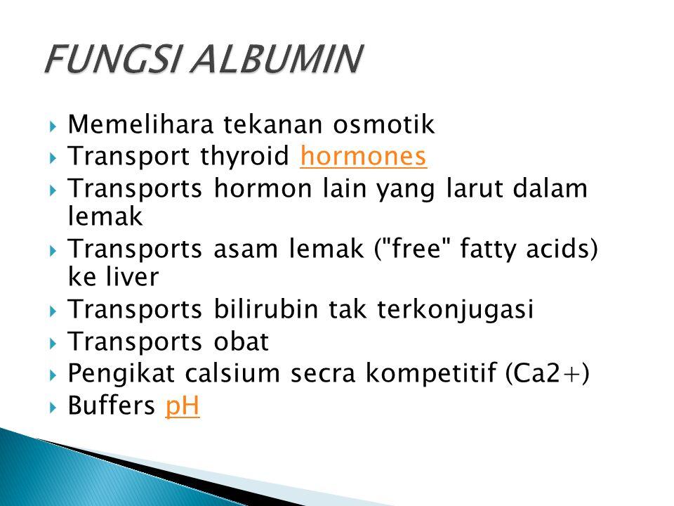  Memelihara tekanan osmotik  Transport thyroid hormoneshormones  Transports hormon lain yang larut dalam lemak  Transports asam lemak (
