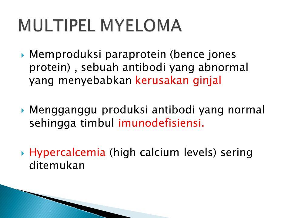  Memproduksi paraprotein (bence jones protein), sebuah antibodi yang abnormal yang menyebabkan kerusakan ginjal  Mengganggu produksi antibodi yang n