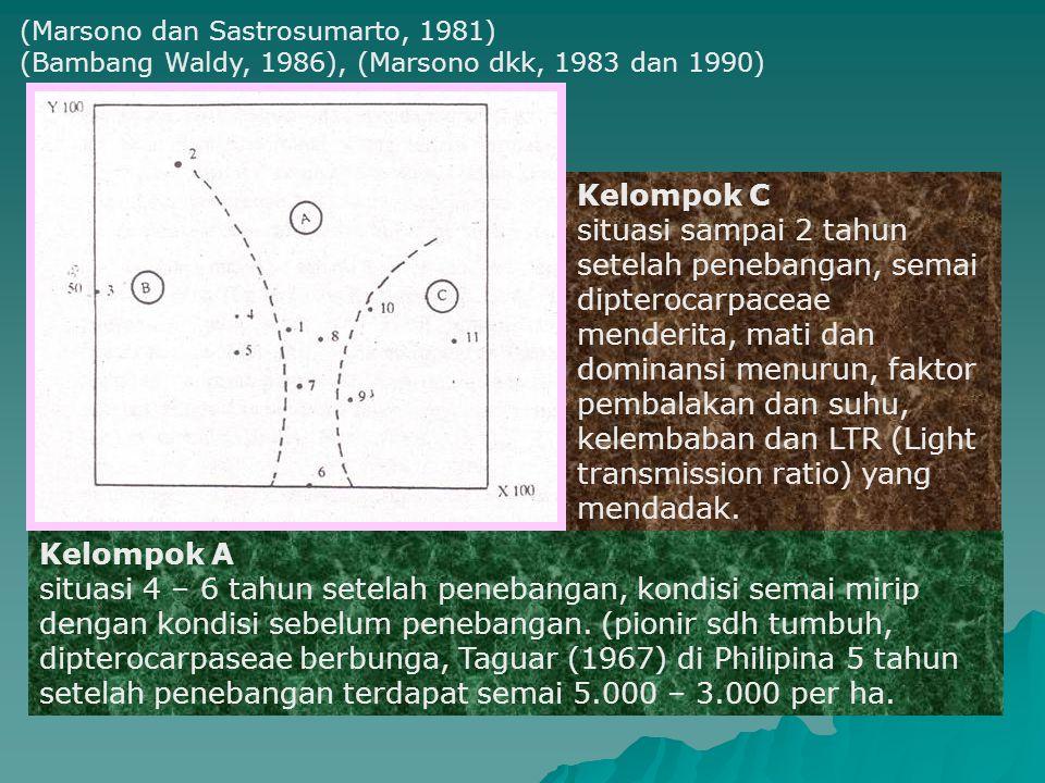 (Marsono dan Sastrosumarto, 1981) (Bambang Waldy, 1986), (Marsono dkk, 1983 dan 1990) Kelompok C situasi sampai 2 tahun setelah penebangan, semai dipt