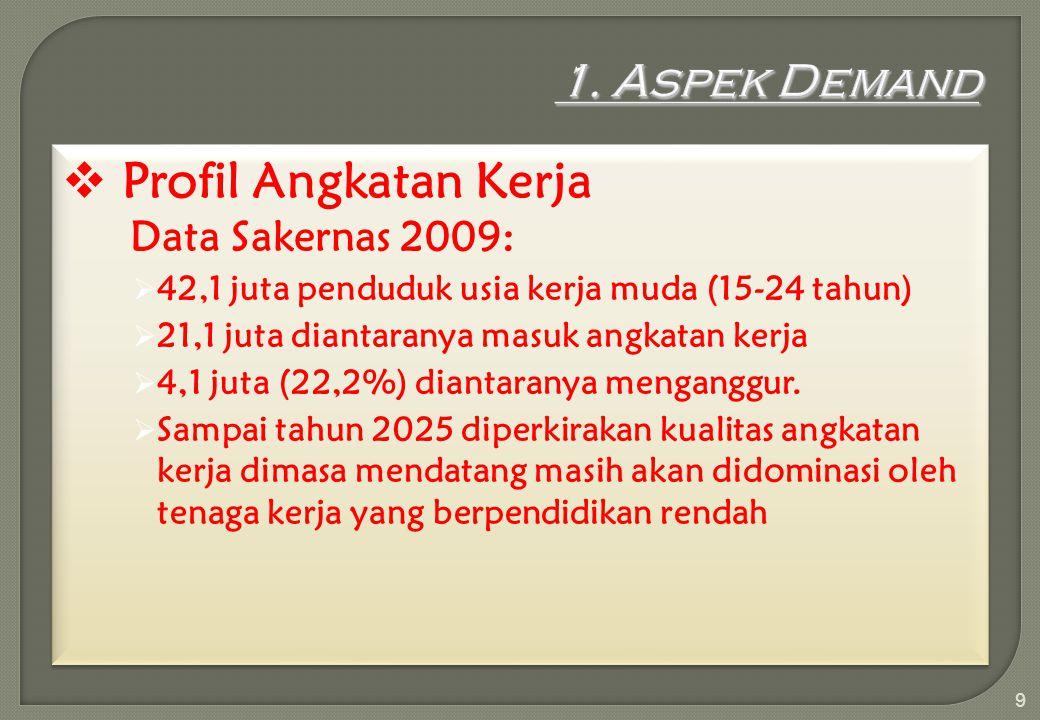  Profil Angkatan Kerja Data Sakernas 2009:  42,1 juta penduduk usia kerja muda (15-24 tahun)  21,1 juta diantaranya masuk angkatan kerja  4,1 juta