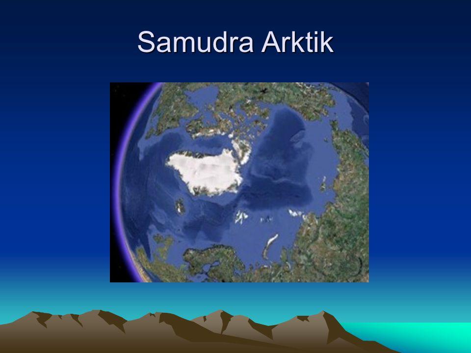 Samudra Arktik