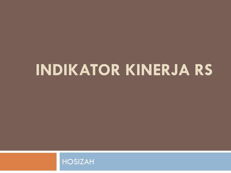 INDIKATOR KINERJA RS HOSIZAH