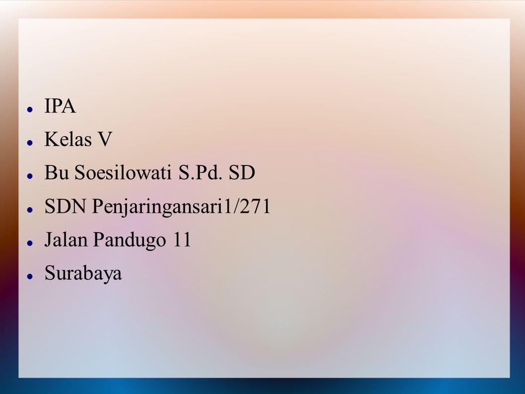 IPA Kelas V Bu Soesilowati S.Pd. SD SDN Penjaringansari1/271 Jalan Pandugo 11 Surabaya