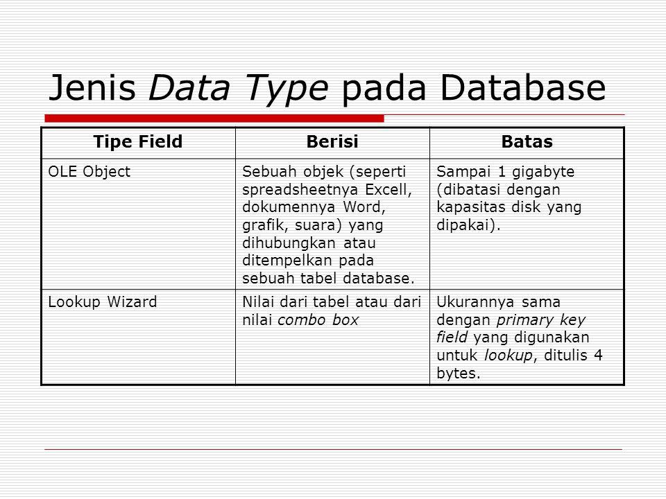 Jenis Data Type pada Database Tipe FieldBerisiBatas OLE ObjectSebuah objek (seperti spreadsheetnya Excell, dokumennya Word, grafik, suara) yang dihubu