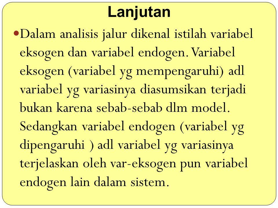 Lanjutan Dalam analisis jalur dikenal istilah variabel eksogen dan variabel endogen. Variabel eksogen (variabel yg mempengaruhi) adl variabel yg varia