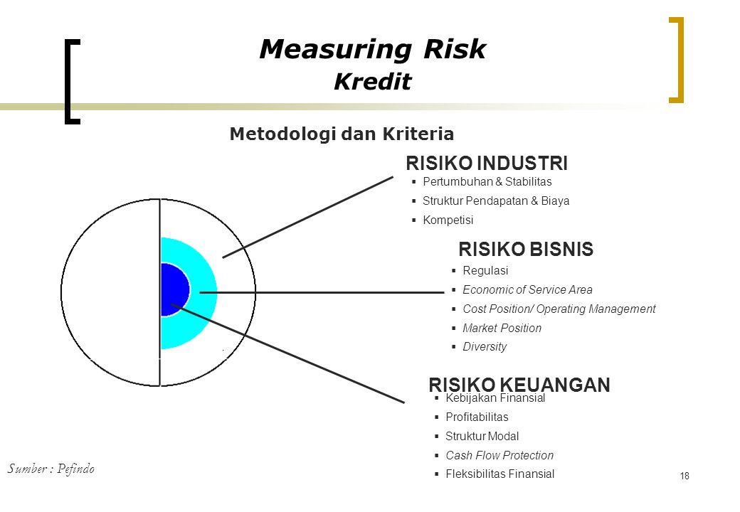18 RISIKO INDUSTRI RISIKO BISNIS RISIKO KEUANGAN  Regulasi  Economic of Service Area  Cost Position/ Operating Management  Market Position  Diver