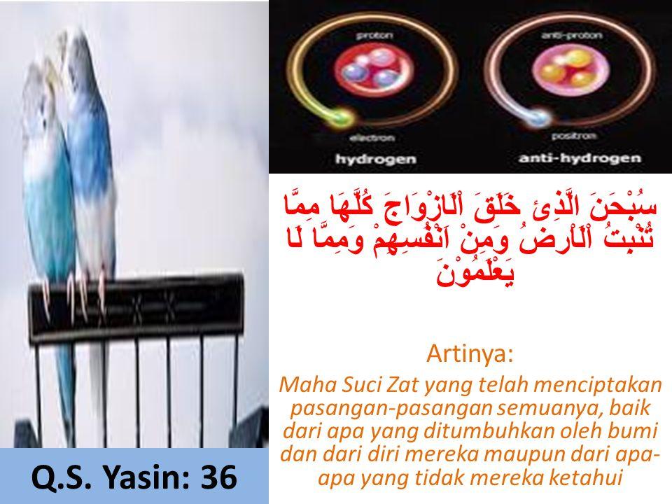 Q.S. Yasin: 36 سُبْحَنَ الَّذِئ خَلَقَ اْلَازْوَاجَ كُلَّهَا مِمَّا تُنْبِتُ اْلَاْرضُ وَمِنْ اَنْفُسِهِمْ وَمِمَّا لَا يَعْلَمُوْنَ Artinya: Maha Suc