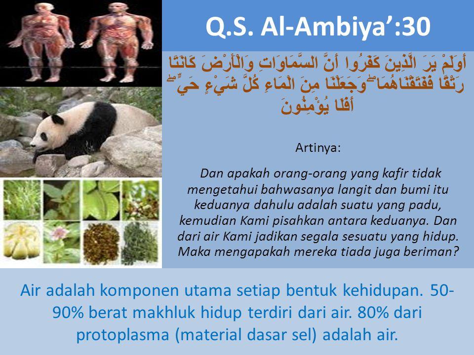 Q.S. Al-Ambiya':30 أَوَلَمْ يَرَ الَّذِينَ كَفَرُوا أَنَّ السَّمَاوَاتِ وَالْأَرْضَ كَانَتَا رَتْقًا فَفَتَقْنَاهُمَا ۖ وَجَعَلْنَا مِنَ الْمَاءِ كُلّ