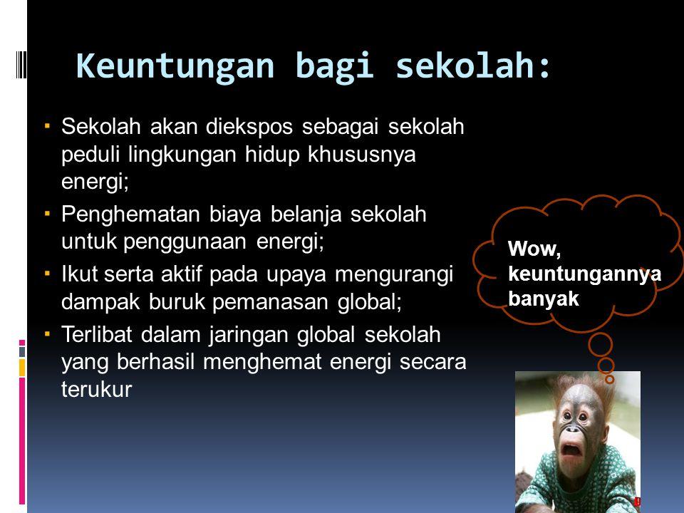 Keuntungan bagi sekolah:  Sekolah akan diekspos sebagai sekolah peduli lingkungan hidup khususnya energi;  Penghematan biaya belanja sekolah untuk penggunaan energi;  Ikut serta aktif pada upaya mengurangi dampak buruk pemanasan global;  Terlibat dalam jaringan global sekolah yang berhasil menghemat energi secara terukur Wow, keuntungannya banyak