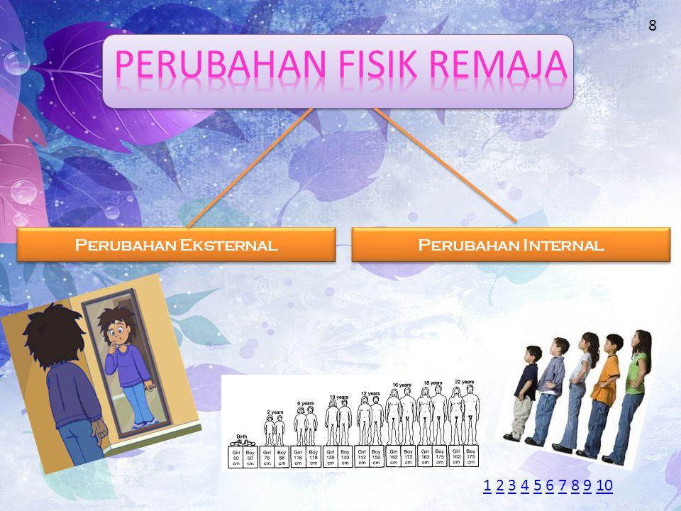 Perubahan Eksternal Perubahan Eksternal Perubahan Internal Perubahan Internal 8 11 2 3 4 5 6 7 8 9 102345678910