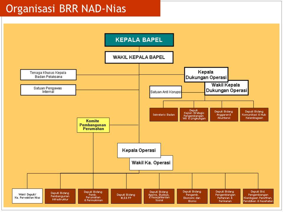 8 Organisasi BRR NAD-Nias