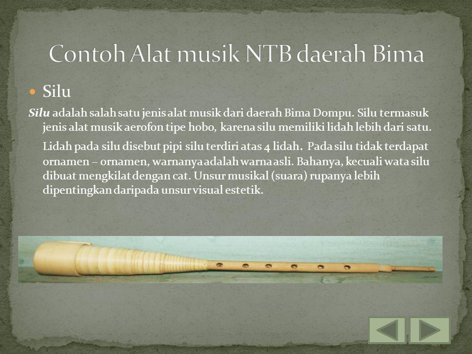 Silu Silu adalah salah satu jenis alat musik dari daerah Bima Dompu. Silu termasuk jenis alat musik aerofon tipe hobo, karena silu memiliki lidah lebi